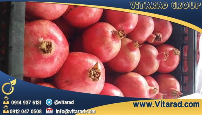 Red Anar export from Iran