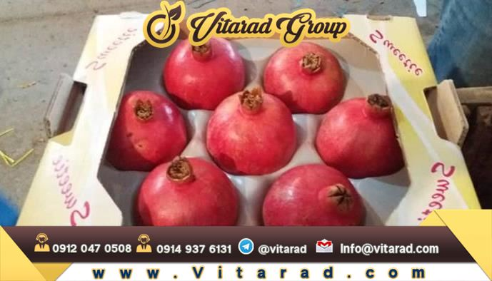 Specifications and location of pomegranate production in Iran