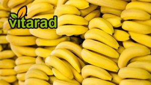 Import banana to Iran
