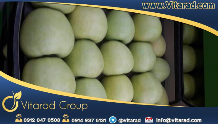 Buy yellow apple online below market price
